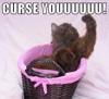 curse you!