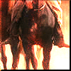 Mag 7 - Ride