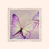 Stock - Purple Butterfly