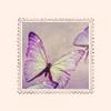 Stock - Purple Butterfly