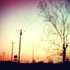 tb louisiana sunset