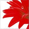 sandy_bandy25 userpic