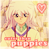 cuter than puppies