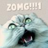 Larissa: kitty ZOMG