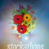 stockathons