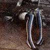 [amanda palmer] stockings of epic