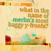 HP - Baggy y-fronts