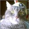 stevencat userpic