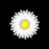 sophranz userpic