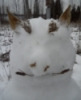 Старый Ко: snowman