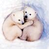 medvídci :))