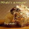pthalogreen: Squeak!