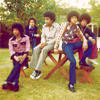 Jacksons on a picinic bench