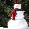 seasonal // snowman