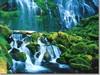 oregon, willamette, 1 proxy falls