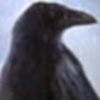sable_raven userpic