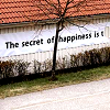 The Secret To Happiness Is...