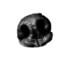 blacknose userpic