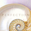 Spectacularly Adequate Empress: Art - Shell Perfection