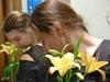 жёлтые лилии...