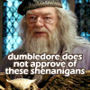 shenanigans, dumbledore does not approve