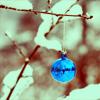 blueberrii