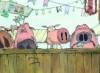 media_pigs