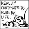 calvin reality