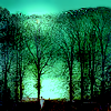 Eliane/Jennifer: moon camping