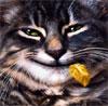 snark_nn userpic