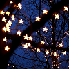 never, ever, ever, give up.: ♣ starry starry.