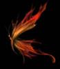 orange/fire butterfly