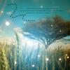 ♫ pavaneofstars ☆: magic tree
