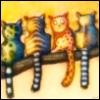 Навитролла - кот