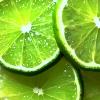 citruslover