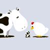 Kuh & Huhn