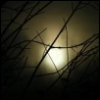 moon november