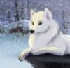 милая (в снегу)