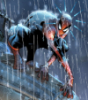 Spidey in the rain