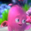 cephalopod