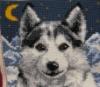 wolveshoard userpic