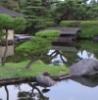 yakuza_banzai userpic