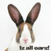 Gypsyluv: bunny/cat Iz All Earz