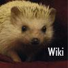 Hedgehog- Wiki
