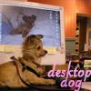 chloechronicle userpic