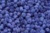 ablueberry userpic