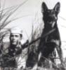 штык и собака