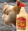 chicken_muffins userpic