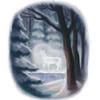 silverdoe in forest