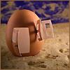 Photo - egg house